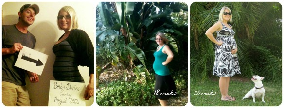 Pregnancy Picture Fun ~ lightgreenmothering.com